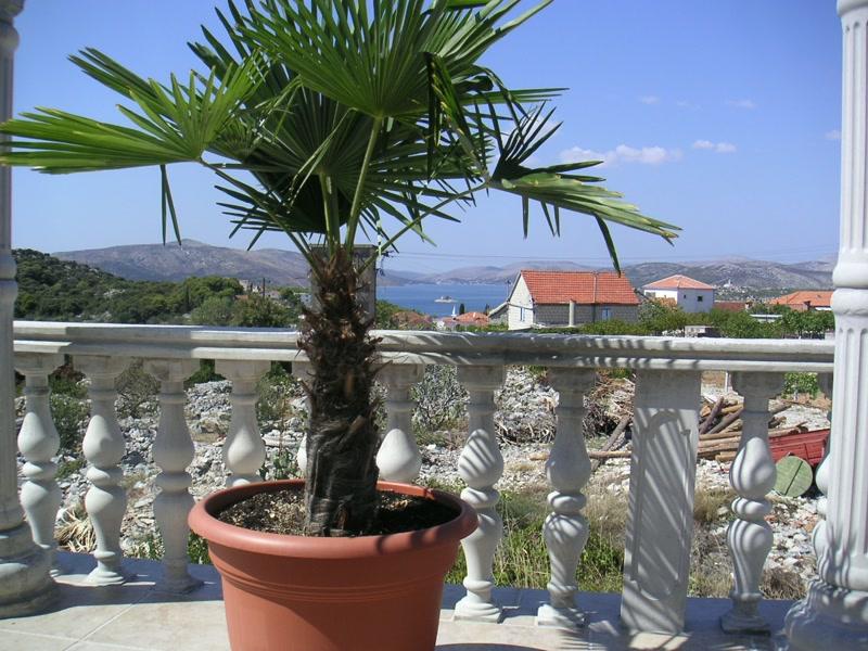 Terrasse <> Terrace