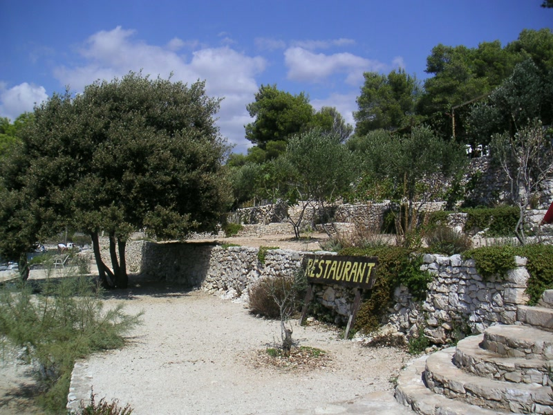 Olivenhaine Duga <> Olive grove Duga